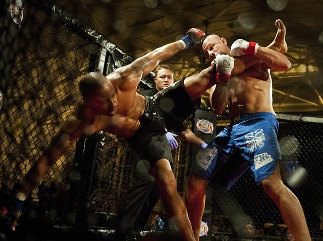 מכנסי MMA