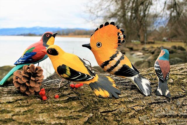 איזה צעצועים ציפורים הכי אוהבות