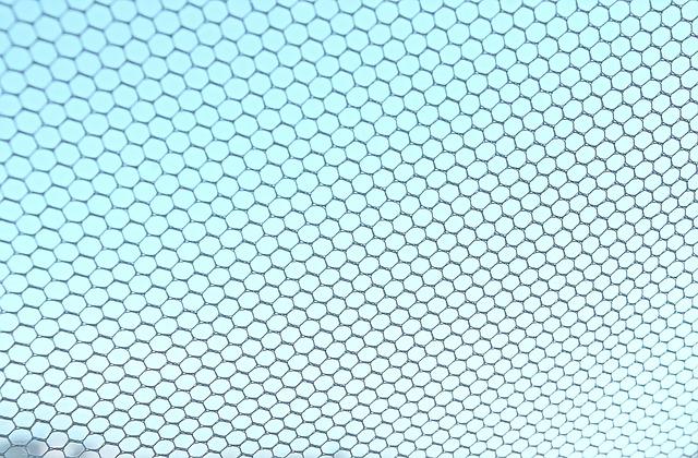 רשת נגד יתושים